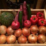 かごに入った沢山の野菜